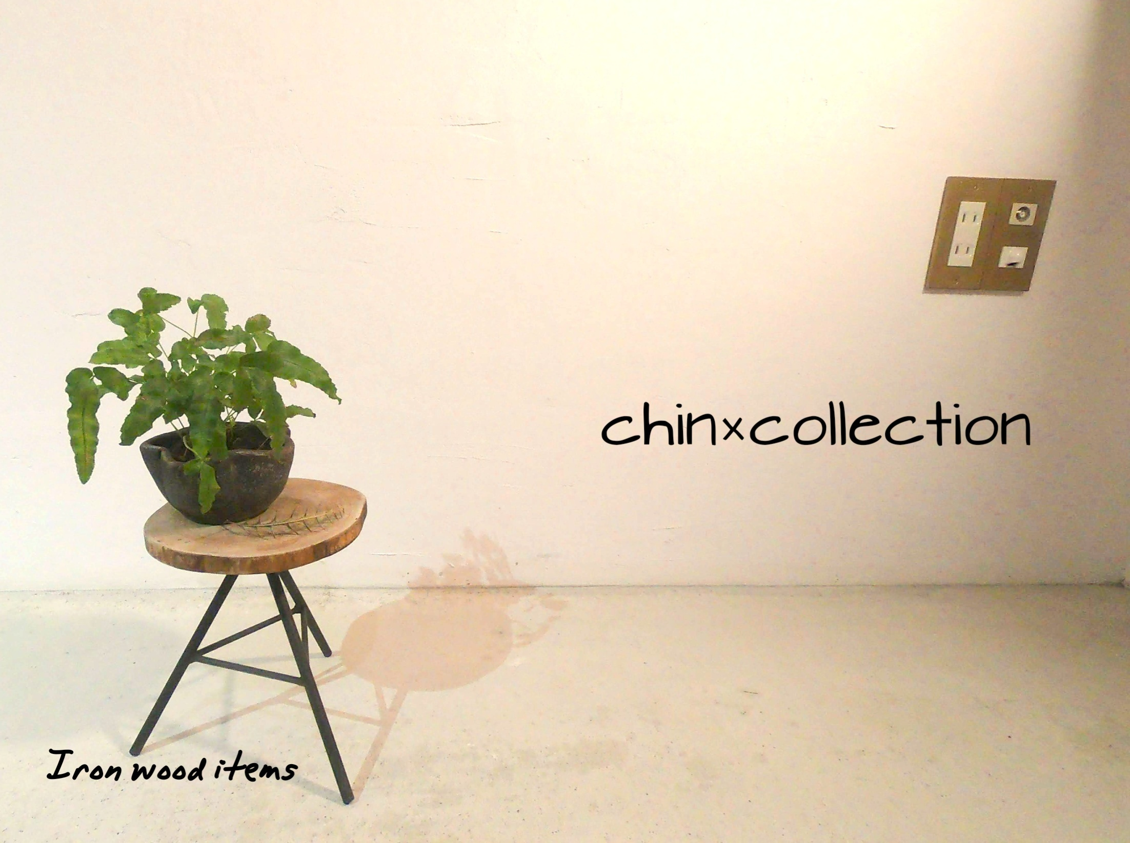 chin×collection